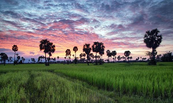 Cambodian Silence. by Buffalo_Tom