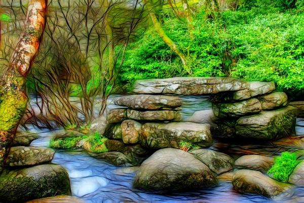 Dartmoor Clapper by dflory