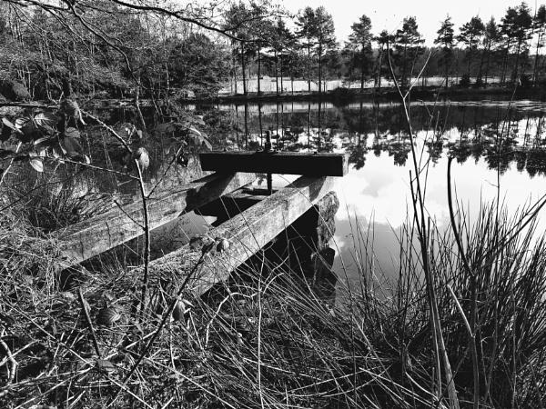 Lake by markymook
