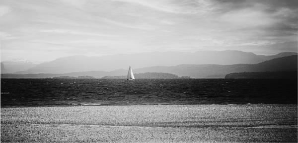 Summer Sailing by Daisymaye