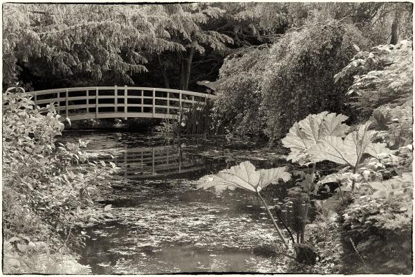 The Bridge by RolandC