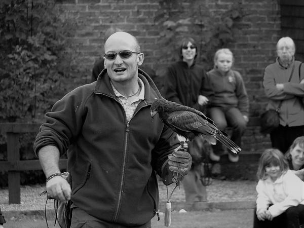 Bird Man by cooky