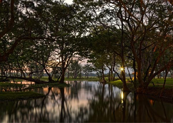 Reflections by pdunstan_Greymoon