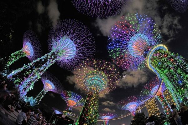 Starry starry night by Uenocats