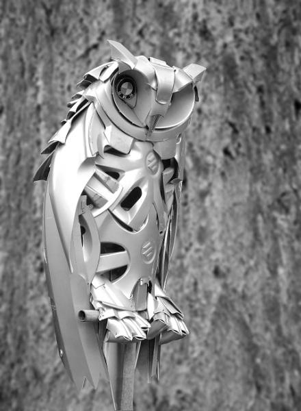 Eagle Owl by pamelajean