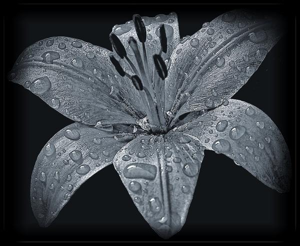 Raindrops keep falling on my head (5) by PhilT2
