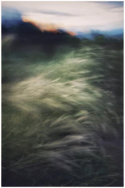 Bradlaugh brushstrokes by Carlos9