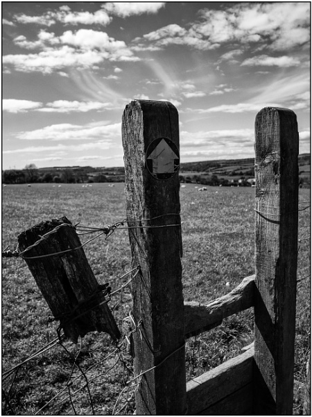 A Well-used Stile by woolybill1