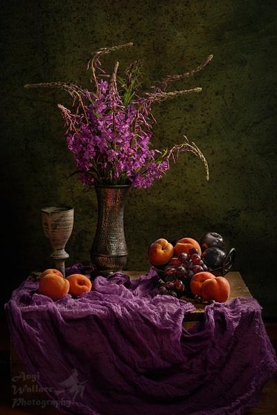 Rosebay Willowherb by Angi_Wallace