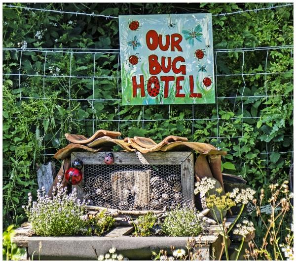 Bug Hotel by mac