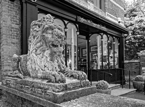 The Fakenham lion in Holt by pdunstan_Greymoon