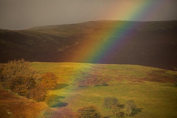 Through the rainbow by rontear