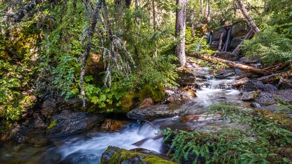 Holland Creek on a Sunny Autumn Day by Phil_Bird