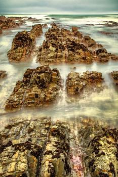 Ocean Rockery