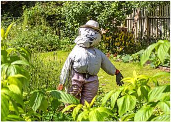 Monsieur Scarecrow