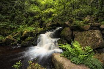 Wyming Flow