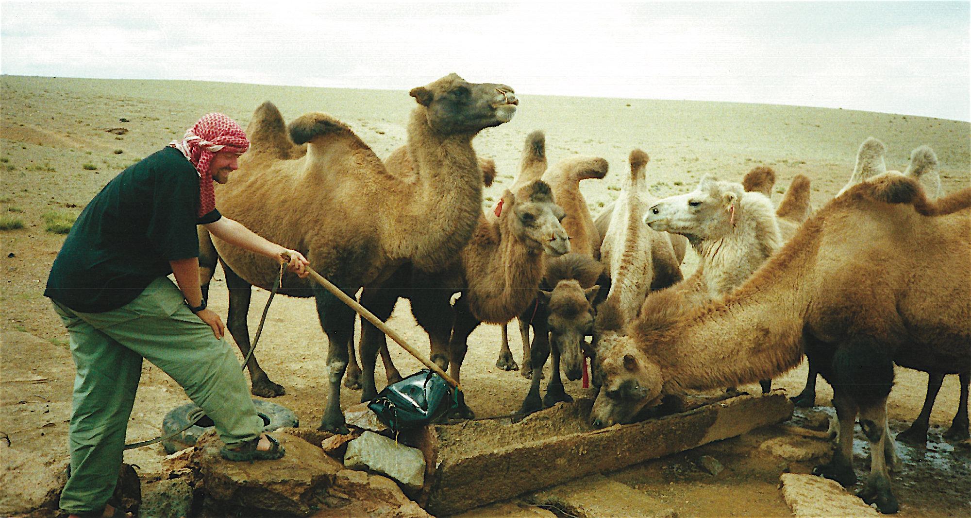 Watering the Camels, Gobi Desert...