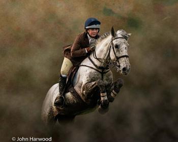 Jumping Horse & Rider