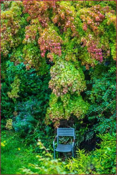 premature autumnal... by estonian