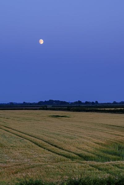 Sunset, moonrising by kip55