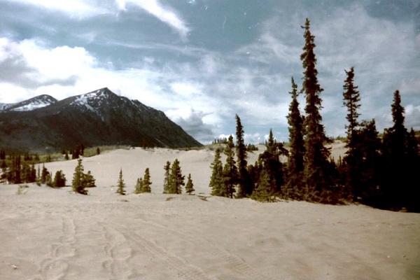 Kobuk Sand Dunes. Alaska by Don20