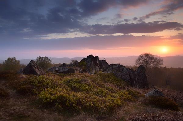 Dawn Light by JelFish