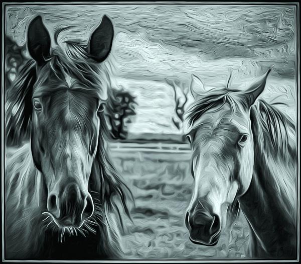 Horsey Horsey by deejay10