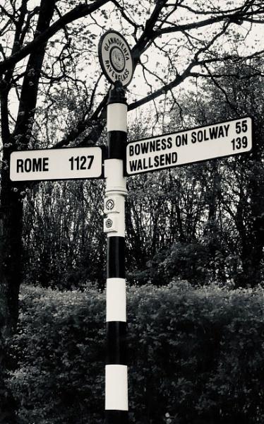 Which way should I go? by Natz88895