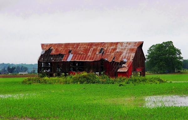 Alabama Barn by madeinbrooklyn