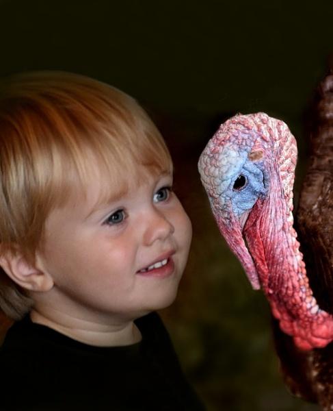 What a Turkey! by Gbloniarz