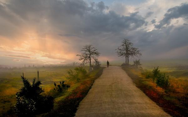 solitary by Shibram
