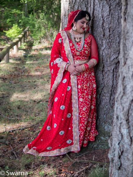 The Bride by the tree II... by Swarnadip