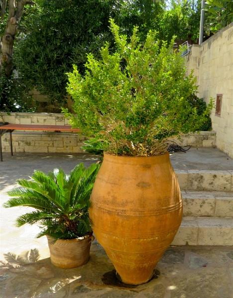 Greek Urns by ddolfelin