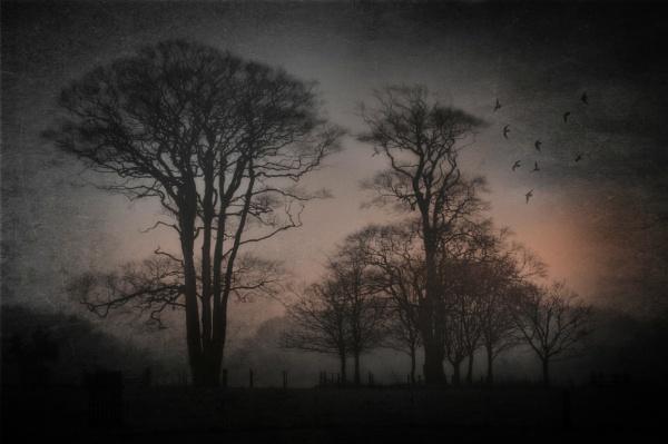 Dawn at Felbrigg by BigAlKabMan