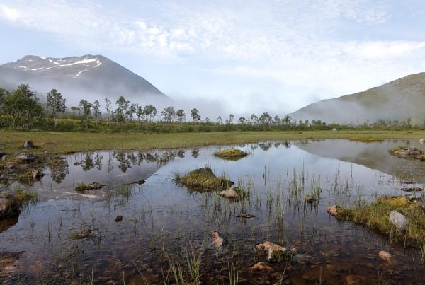 Arctic wetland by L3693