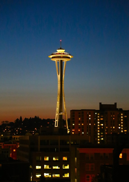 Seattle Space Needle by Ffynnoncadno
