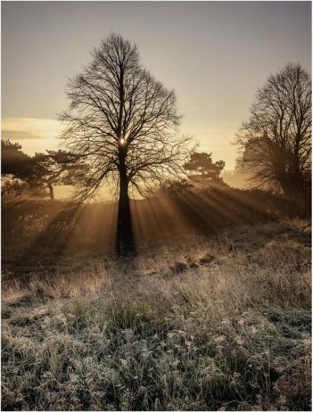 Bradlaugh dawn by Carlos9
