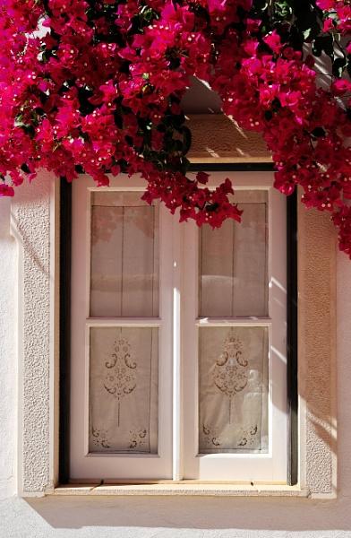 Old window, Algarve by Neopolis