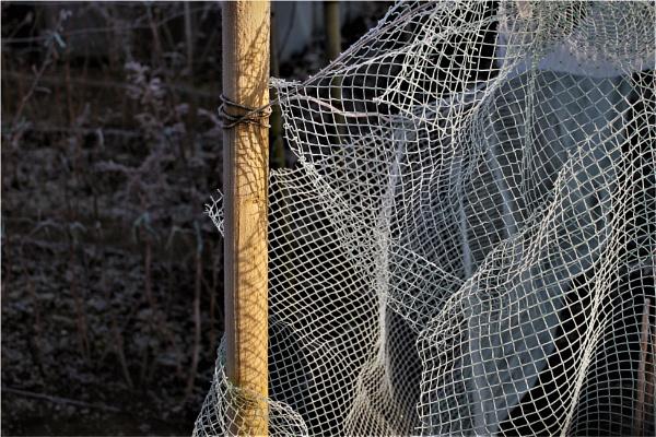 Netting pattern by helenlinda