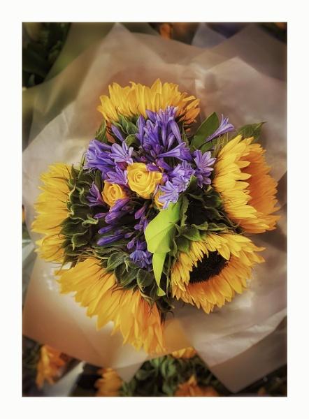 Sunflower bouquet by StevenBest