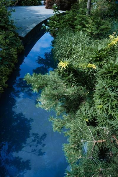 SPLASH OF SUMMER creek by manicam