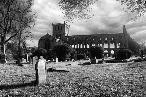 Jedburgh Abbey by Ffynnoncadno