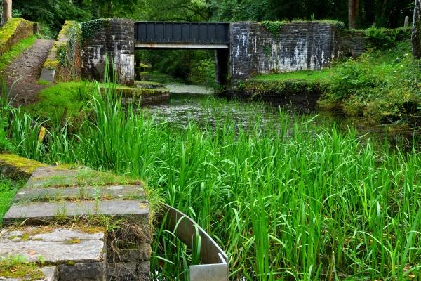 Neath Canal at Rheola, South Wales by LittleTaffia