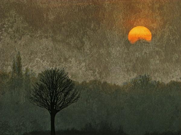 Misty Morn by RLF