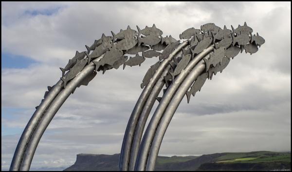 Flying Fish, Ballycastle, North Antrim Coast by digichromeed