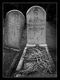 Tombstone Talk