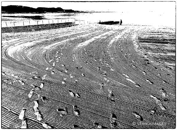 Beachcomber\'s Footprints by starckimages