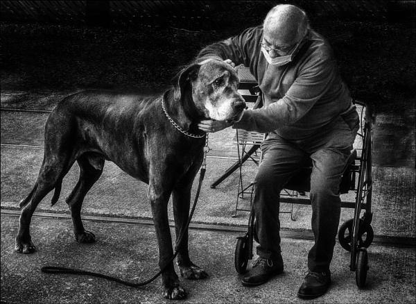 Mans Best Friend. by mickmarra