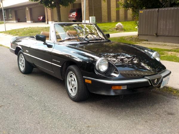 a 1991 Alfa Romeo Spider on McNab St S by TimothyDMorton