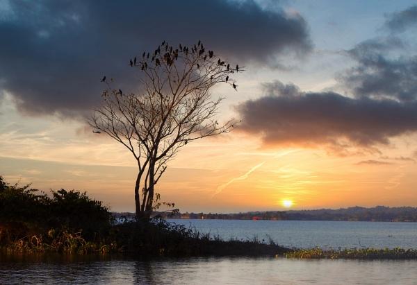 Sunset At Rangamati by Shibram